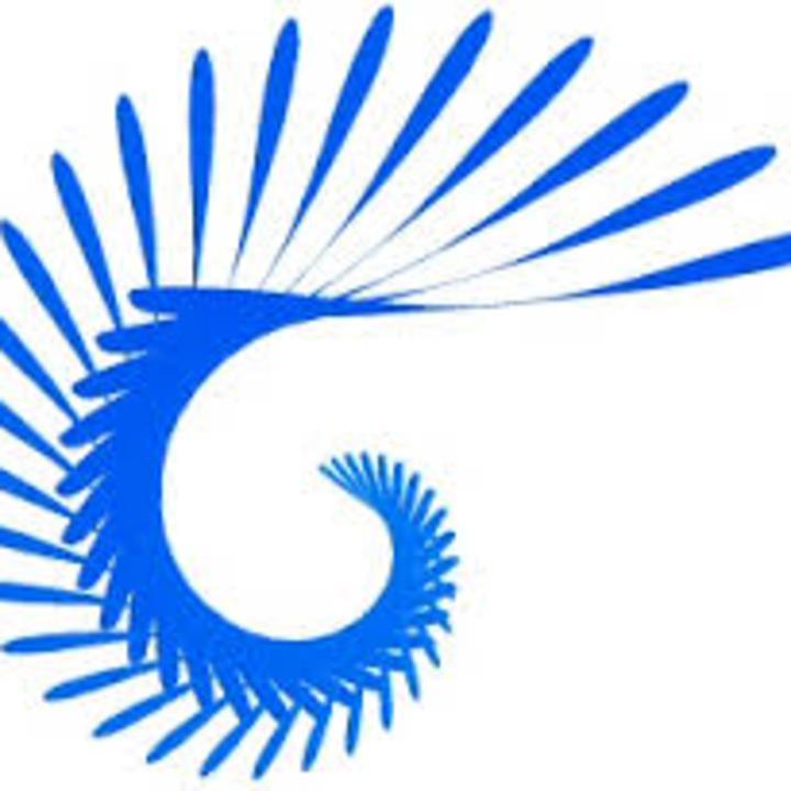 Logo Designer Information  A Digital Dreamer